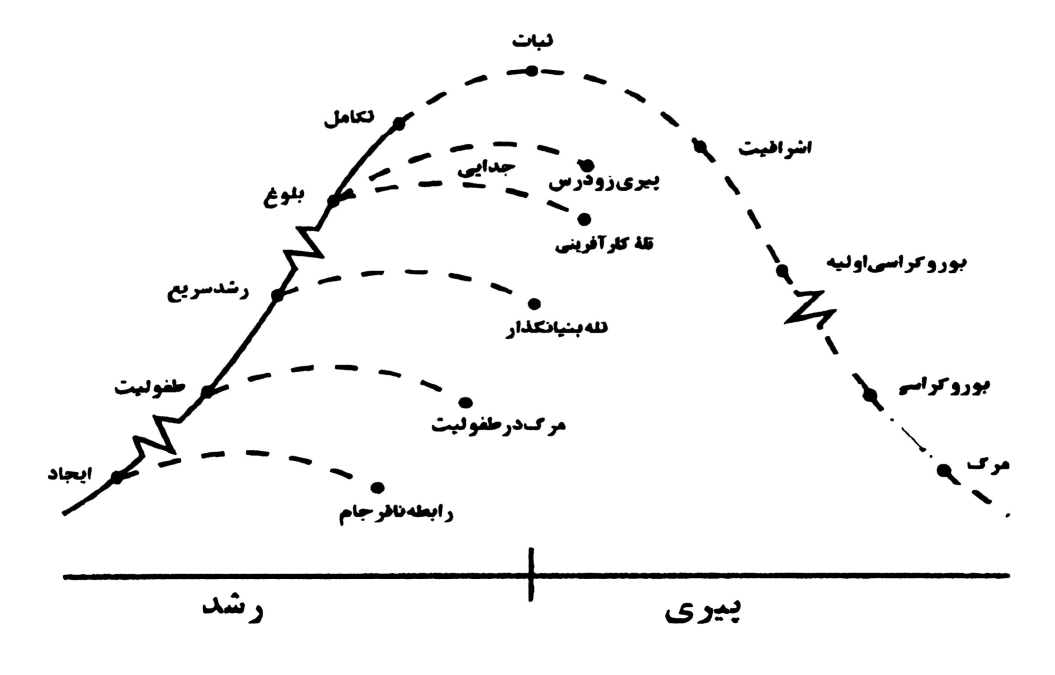 شکل ۲ منحنی دوره عمر سازمانی