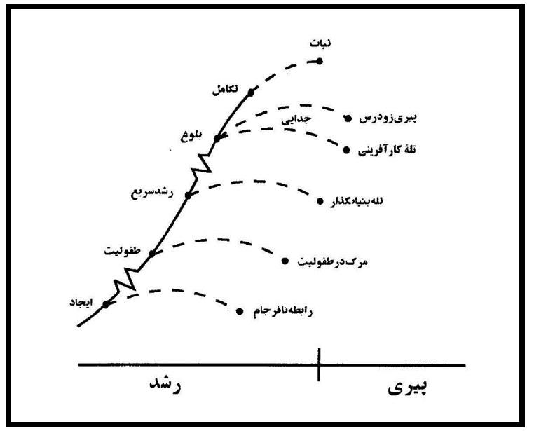 شکل ۷ دوره ثبات