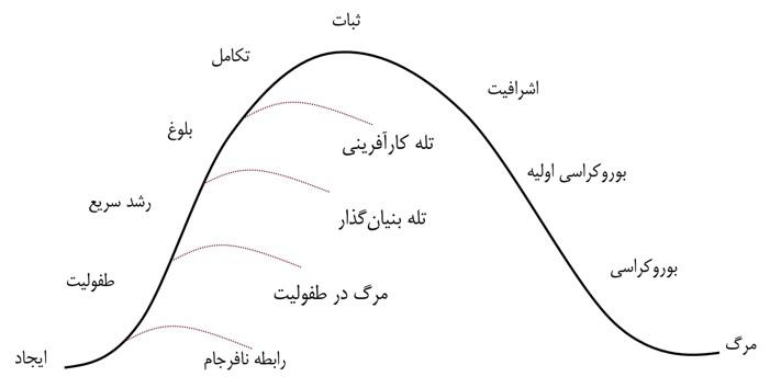 شکل شماره 3: دوره های عمر سازمانی